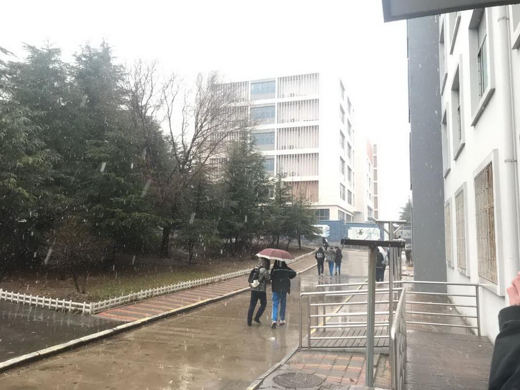 雪中的校园