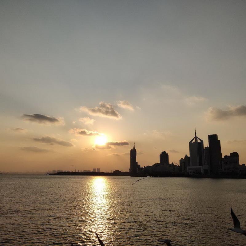 青岛栈桥 海鸥翱翔