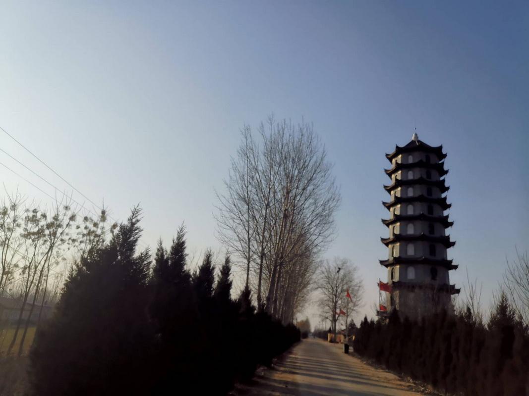 大沽河畔的塔