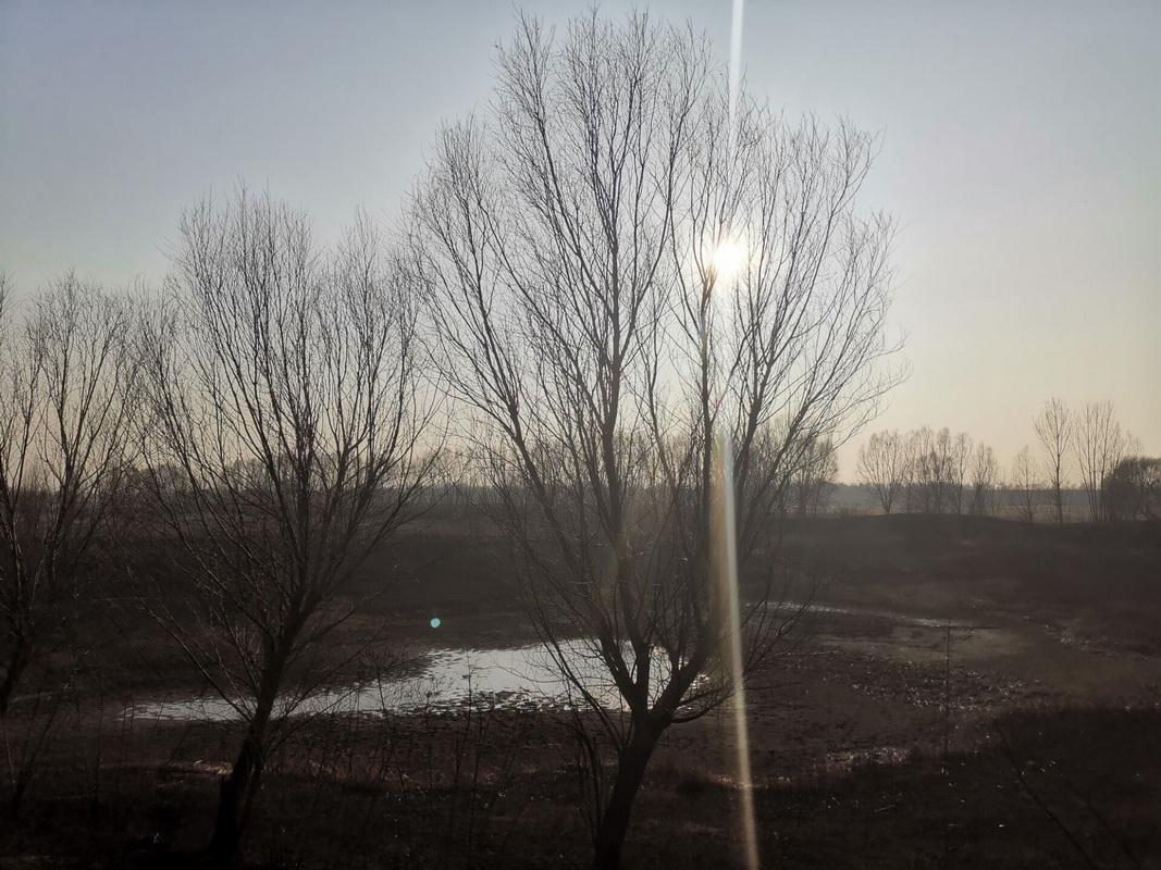 大沽河的河床