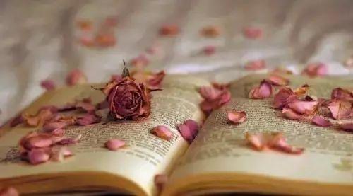 给我影响最大的一本书