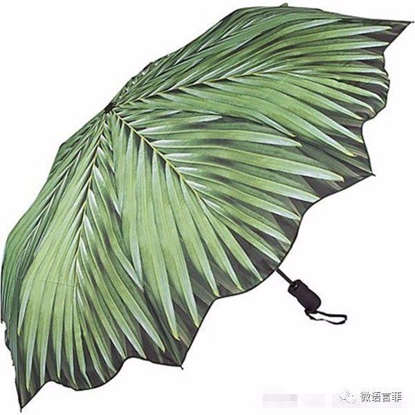 马爽作文:风雨中,那一幕感动着我